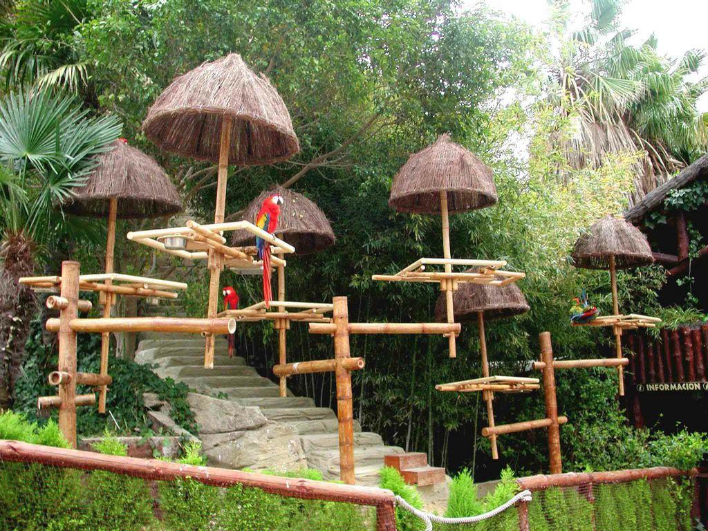 jardin de bambu dise os arquitect nicos