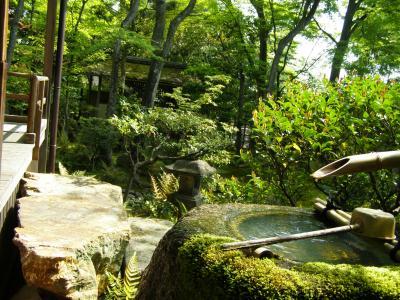 Jardines japoneses 3 for Bordillos de hormigon para jardin
