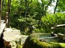 Jardines japoneses 3