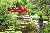 Jardines japoneses 5