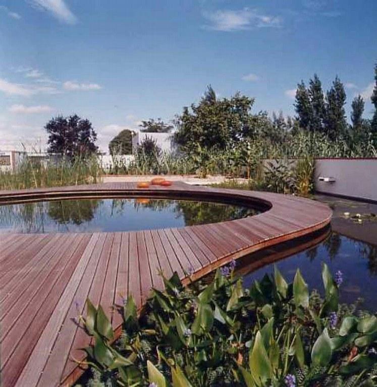 Piscinas naturales o ecol gicas for Como hacer una piscina ecologica
